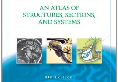 Book Review: Neuroanatomy – An Atlas of Structures, Sections and Systems, 8th edition