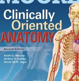 Book Review: Clinically-Oriented Anatomy, 7th edition