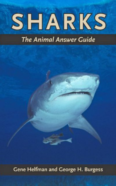 Book Review: Sharks – The Animal Answer Guide