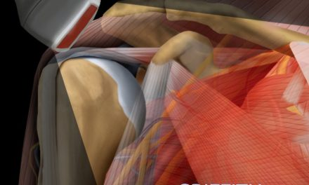 Book Review: Diagnostic Ultrasound – Musculoskeletal