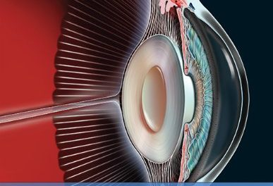 Book Review: Diagnostic Ophthalmology