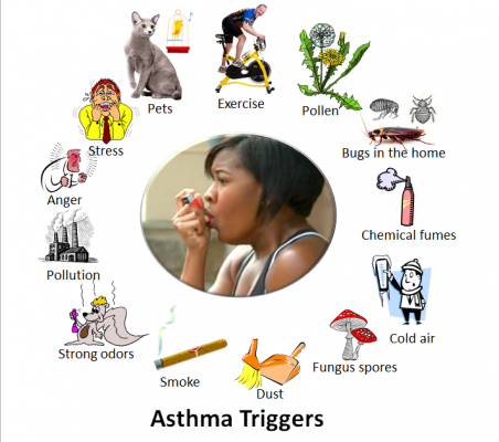 Asthma Triggers Source - Wikipedia