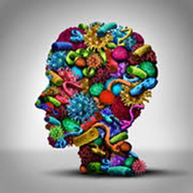 Infections and Antibiotic Use Linked to Manic Episodes