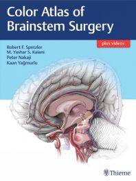 Book Review: Atlas of Brainstem Surgery