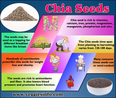 Enhancing Your Health: Discover 20 Health Benefits of Chia Seeds