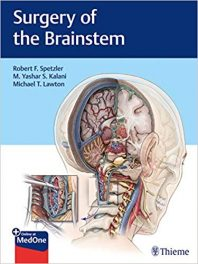 Book Review: Surgery of the Brainstem