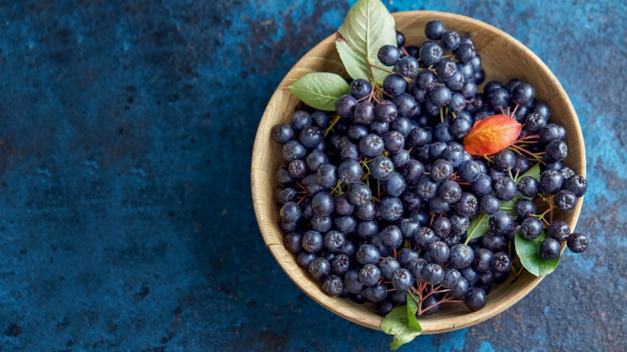 Aronia Berries: An Excellent Source Of Antioxidants